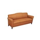 Contemporary Sofa in Vinyl, 53788