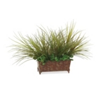 Grass in Metal Ledge, 91678