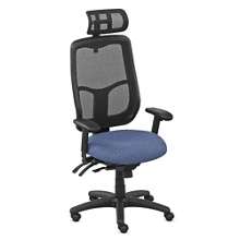 Mesh Executive Chair with Headrest, 56576