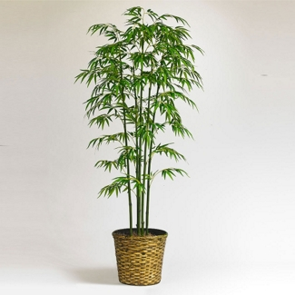 6 Foot Bamboo Tree with Woven Basket, 87371