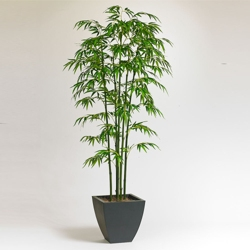 Realistic Bamboo Tree For Office - 7 Ft., 87370