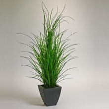 5' Tall Grass Potted Plant , 87380