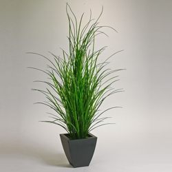 5' Tall Grass Potted Plant