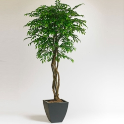 7 Foot Artificial Potted Tree - Smilax
