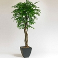 7 Foot Artificial Potted Tree - Smilax , 87358