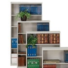 Steel Bookcase with Five Shelves, 32193