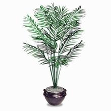 Areca Palm Tree and Mahogany Planter - 6'H, 92011