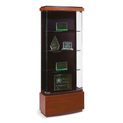 Medium Display Case, 31654