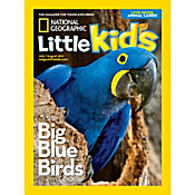 National Geographic Little Kids Magazine International Delivery