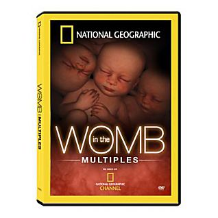 In the Womb Multiples DVD