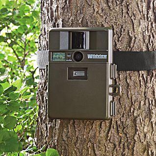 Digital Motion Detection Camera