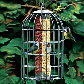 View Two-in-one Bird Feeder image