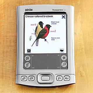 National Geographic Handheld Birds PDA