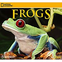 2008 National Geographic Frogs Wall Calendar