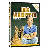 Dog Whisperer with Cesar Millan, Power of the Pack DVD