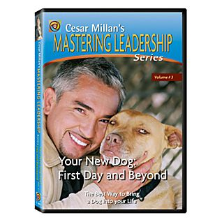 Your New Dog: First Day and Beyond DVD
