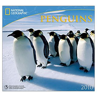 2010 National Geographic Penguins Wall Calendar