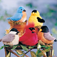 Songbirds Choir, Five-Bird Set