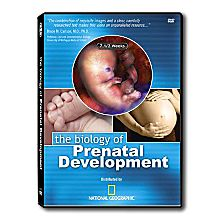 Biology of Prenatal Development DVD, 2006