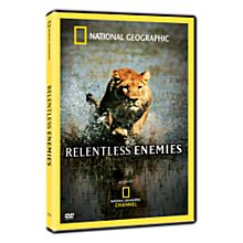 Relentless Enemies DVD