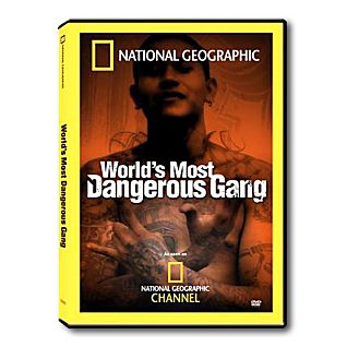 World's Most Dangerous Gangs DVD