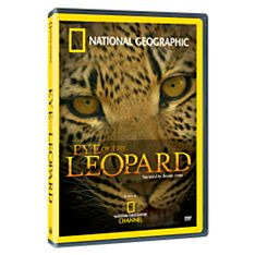 Eye of the Leopard DVD