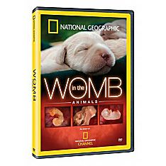 In the Womb Animals DVD