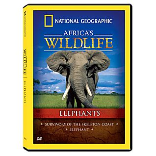 View Africa's Wildlife Collection Elephants DVD image