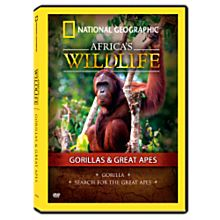 Africa's Wildlife Collection Gorillas and Great Apes DVD