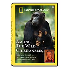 Among the Wild Chimpanzees DVD, 2008