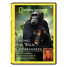 Among the Wild Chimpanzees DVD