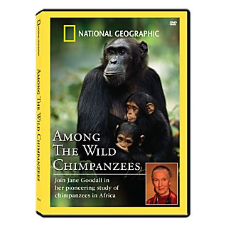 View Among the Wild Chimpanzees DVD image