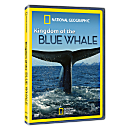 Kingdom of the Blue Whale - Standard DVD
