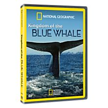 Kingdom of the Blue Whale - Standard DVD, 2009