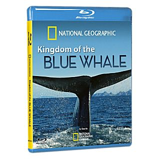View Kingdom of the Blue Whale - Blu-Ray Disc image