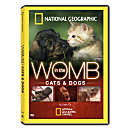 In the Womb: Cats and Dogs DVD