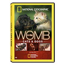 In the Womb: Cats and Dogs DVD, 2009