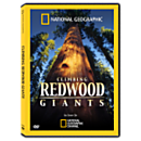 Climbing Redwood Giants DVD