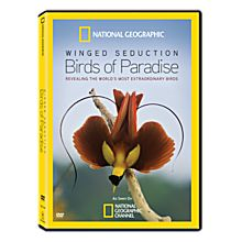 Winged Seduction: Birds of Paradise DVD, 2012