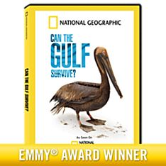 Can the Gulf Survive? DVD