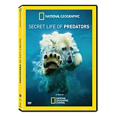 Secret Life of Predators DVD, 2013