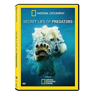 View Secret Life of Predators DVD image