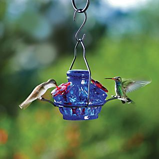 Blue Hummingbird Mini-feeder