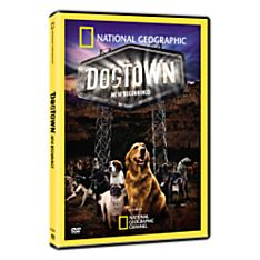 Dogtown: New Beginnings DVD, 2008