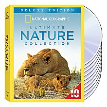 Rainforest Animal DVDs