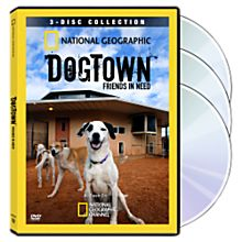 DogTown: Friends in Need 3-DVD Collection