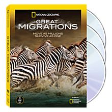 Animal Migrations DVD