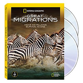 View Great Migrations 3-DVD Set image