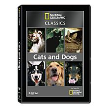 Amazing Animals DVD
