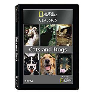 View National Geographic Classics: Cats and Dogs 3-DVD Set image